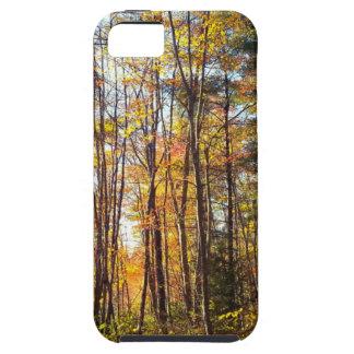 Bos het van Newhampshire van de Herfst Tough iPhone 5 Hoesje