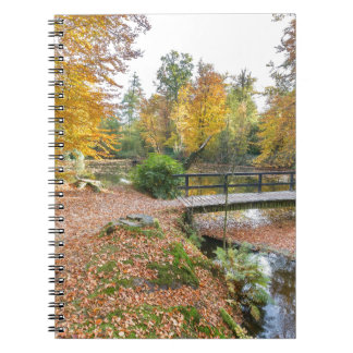 Bos met vijver en brug in herfstkleuren ringband notitieboek