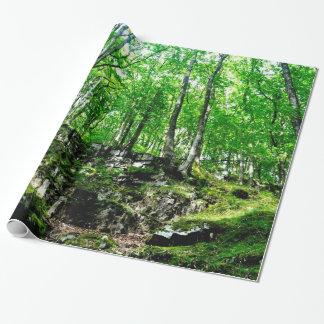 Bos Slepen die in de Vallei van Wales lopen Neath Inpakpapier