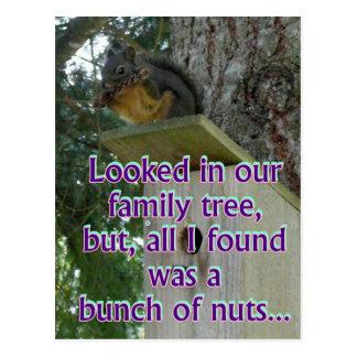 bos van noten briefkaart