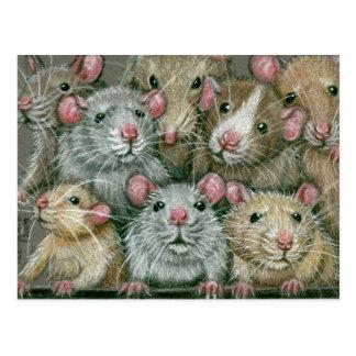 Bos van Ratten bij het Briefkaart van de