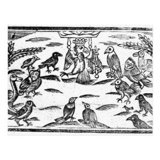 Bosrijke Choristers of de Harmonie van Vogels Briefkaart