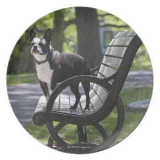Boston Terrier Melamine+bord