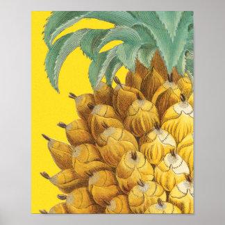 Botanische Ananas in Geel Poster