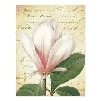 Botanische de Wijnoogst van de Bloem van de Briefkaart