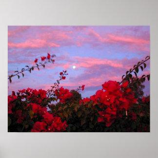 Bougainvillea en Volle maan bij Zonsondergang Poster
