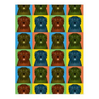 Bouvier des Flandres Dog het Pop-art van de Briefkaart