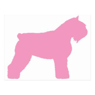 Bouvier des Flandres Dog (in roze) Briefkaart