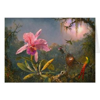 Braziliaanse Orchidee en Kolibries 1871 Kaart