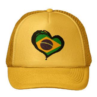 Brazilië Brazilië Petten