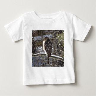 Breed-gevleugelde Havik Baby T Shirts