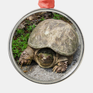 Brekende Schildpad Kerstboom Ornament