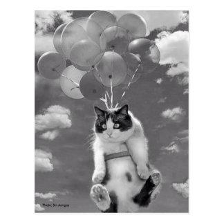 Briefkaart: Grappige kat die met Ballons vliegt Briefkaart