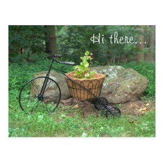 Briefkaart hallo daar De Roze Bloemen van de fiet Wenskaart
