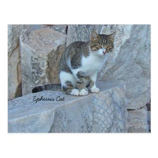 Briefkaart van de Kat van Ephesus het Wilde