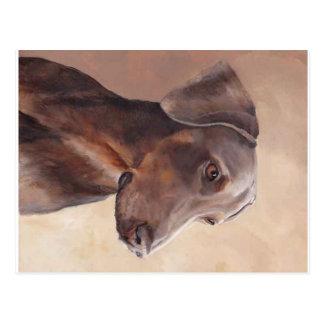 Briefkaart van de Kunst van de Hond van Pinscher