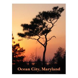 Briefkaart van de Stad van de zonsondergang het