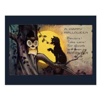 Briefkaart van Halloween van de Uil van de