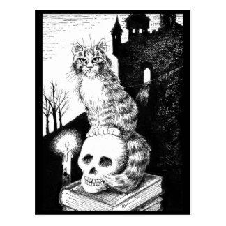 briefkaart van Halloween van de Wasbeer van katten