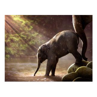 Briefkaart van het Bad van de Olifant van het baby