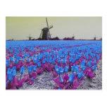 Briefkaart van het Landschap van de Windmolens van Wenskaart