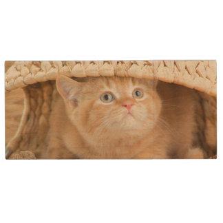 Brits Katje die uit van onder een Mand kijken Houten USB Stick