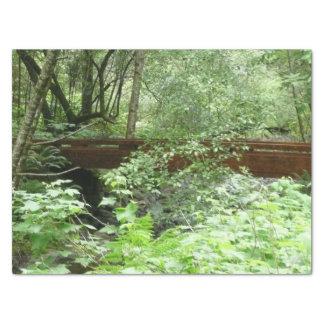 Brug I van het Bos van Muir Tissuepapier