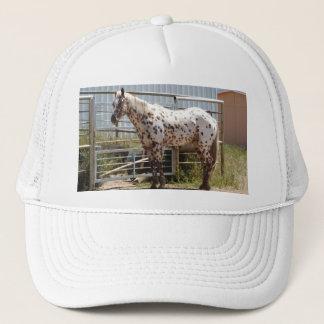 Bruin bevlekt paard Appaloosa Trucker Pet