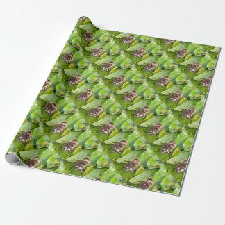 Bruin eendje die op waterleliebladeren lopen cadeaupapier