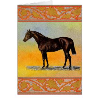 Bruin Paard Briefkaarten 0