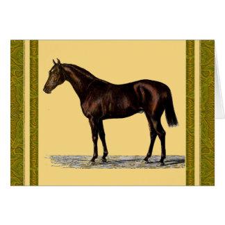 Bruin Paard Kaart