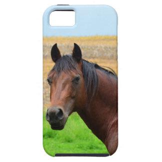 Bruin Paard op een Gebied Tough iPhone 5 Hoesje