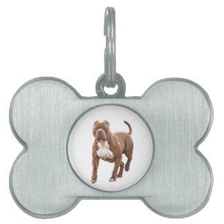 Bruine de stier van de kuil huisdieren naamplaatje