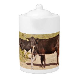 Bruine Koeien in de Pot van de Thee van het Chroom