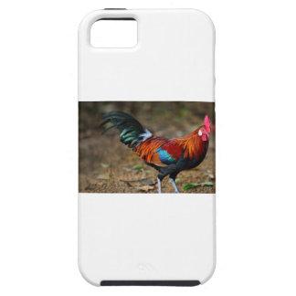 Bruine Leghorn Haan Tough iPhone 5 Hoesje