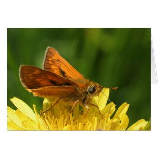 bruine vlinder wenskaart