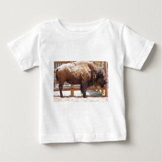 Buffels Baby T Shirts