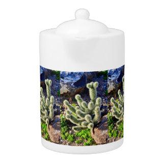 Cactus op de Pot van de Thee van de Rots