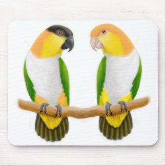 Caique de Liefde Mousepad van de Papegaai Muismat