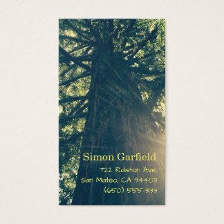 Californische sequoia met de Visitekaartjes van