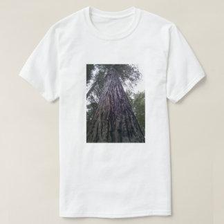 Californische sequoia t shirt