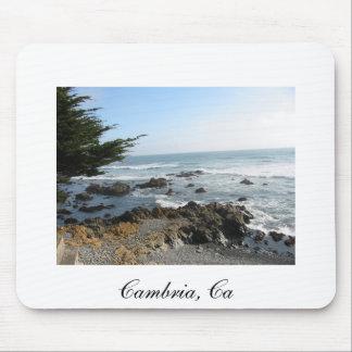 Cambria, CA 2, Cambria, Ca Muismat