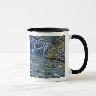 Cameron Falls in het Nationale Park van Meren Mok