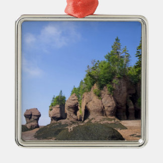Canada, New Brunswick, Hopewell Kaap, Baai van Zilverkleurig Vierkant Ornament