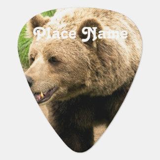 Canadese Grizzly Gitaar Plectrum