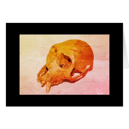 Card 16 Skull Kaart