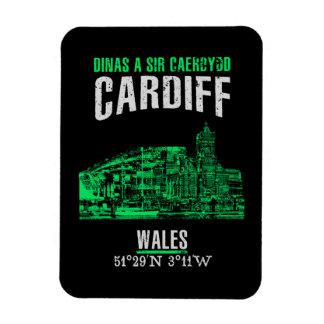 Cardiff Magneet