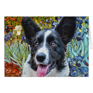 Cardigan Welse Corgi Briefkaarten 0
