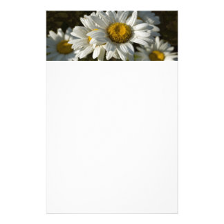 Casacding Daisy Stationery Briefpapier