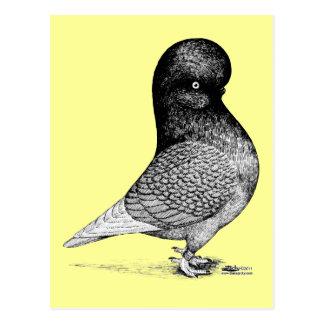 $ce-andalusisch Tuimelschakelaar Briefkaart